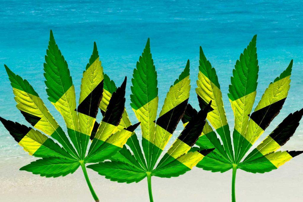 marijuana leaf composite 1