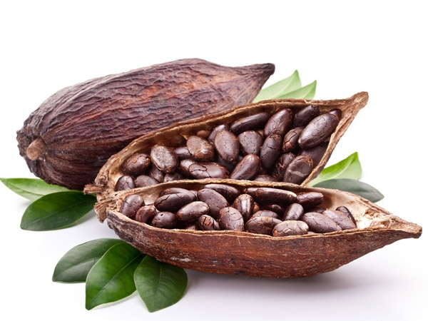 Cocoa may help diabetes & heart failure